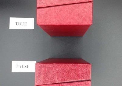 Packaging Cartier vs falso 11