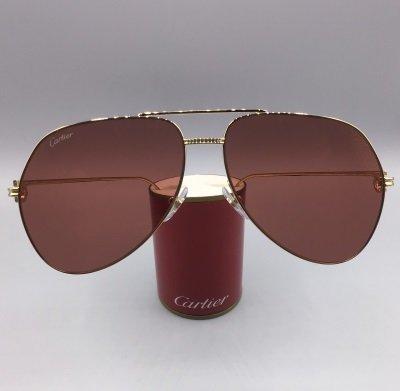 Cartier modello CT0110S colore 010